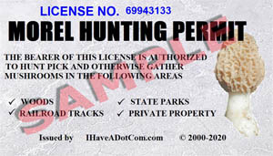 Sample License